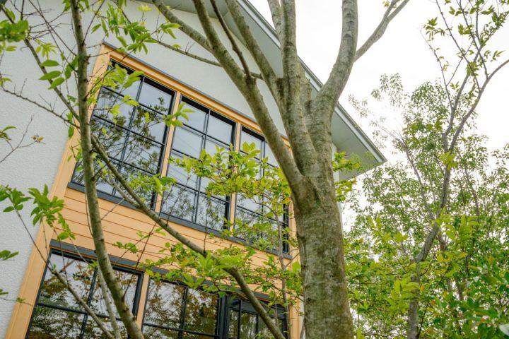 倉敷市に完成した林のカフェ。150種類以上の草木花が季節ごとに表情を変え、お客様を迎えます。