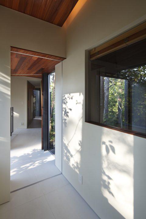 森の中に完成した絶景を楽しむ別荘、木漏れ日が美しい渡り廊下