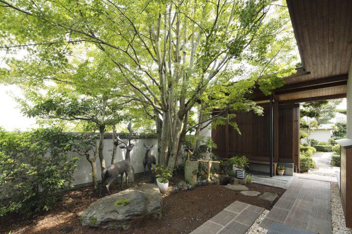 倉敷市の高級住宅、木漏れ日の内庭