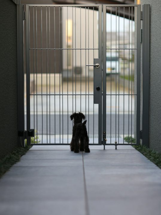 シンプルな門扉と愛犬