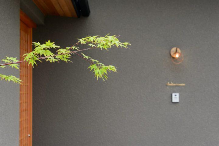 もみじと格子戸と真鍮の照明