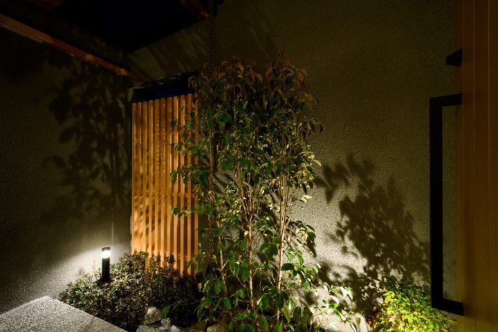照明で浮かび上がる植栽