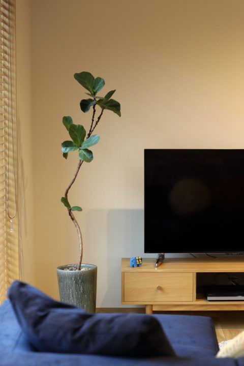 リビングのインテリアとテレビボード