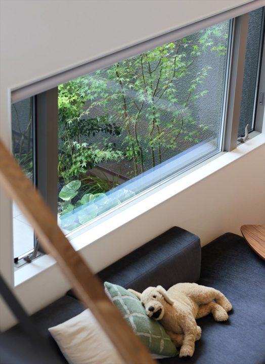 岡山市中区に完成した注文住宅、中庭から緑がさしこむリビング