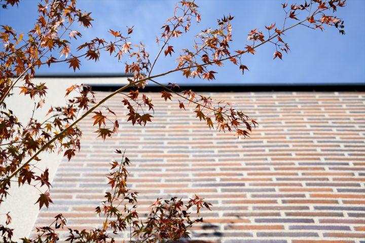 タイル壁と植栽が映える外構デザイン