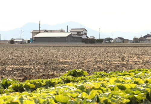 岡山市南区藤田に建築中の田園に浮かぶ平屋、周囲の景色に溶け込むグレーの外壁