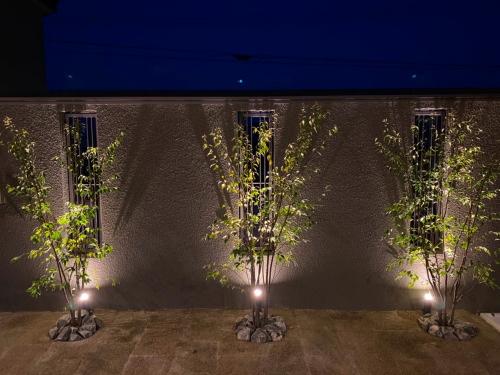 中庭の植栽は夜ライトアップできます