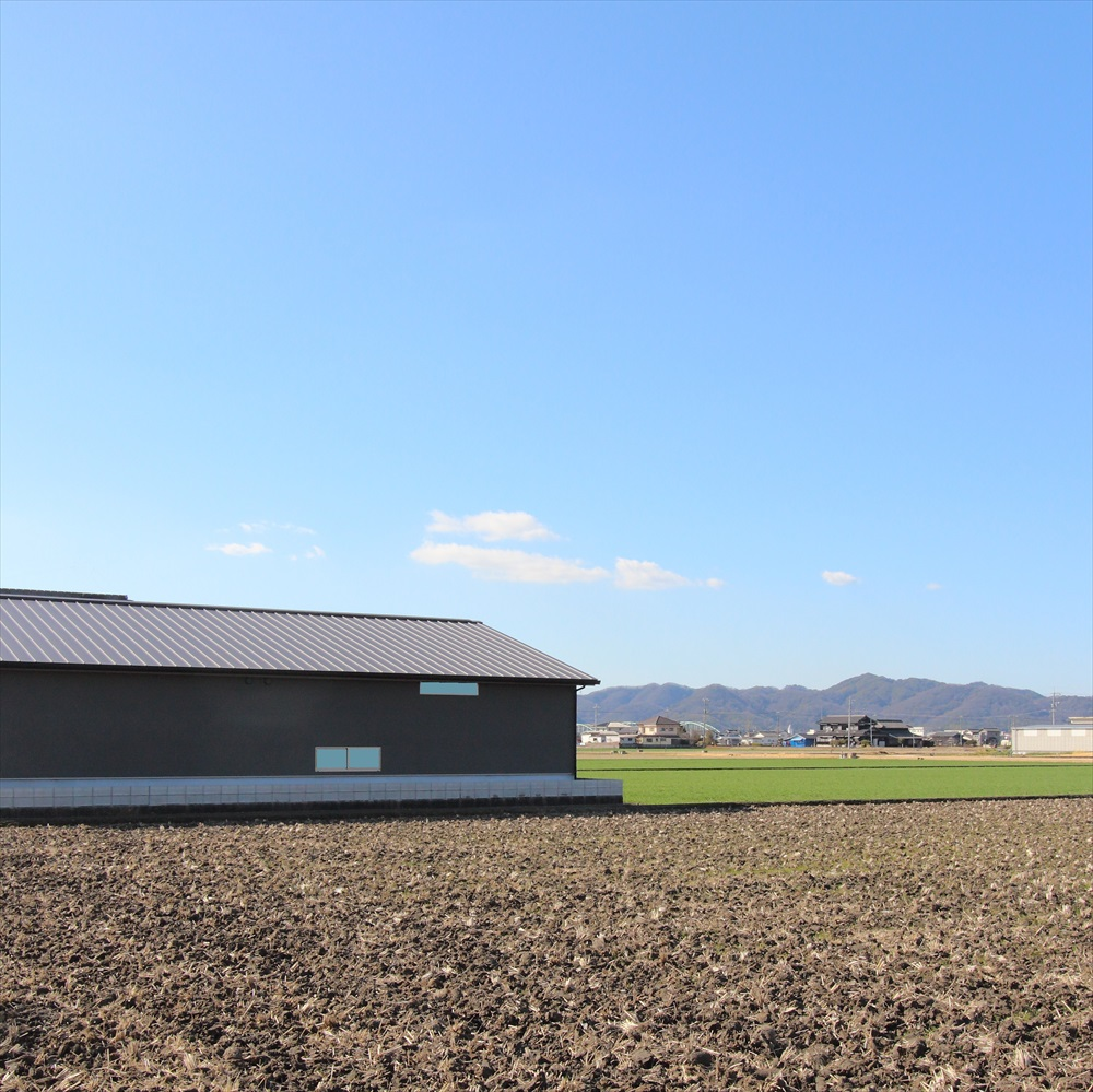 田園に浮かぶ平屋