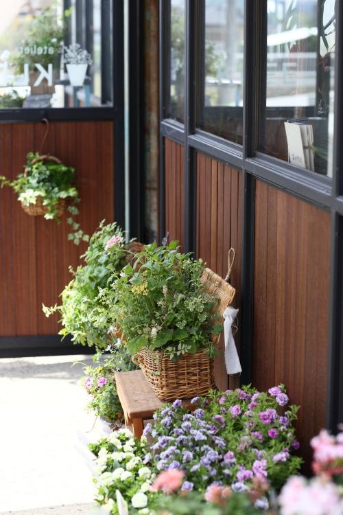 植物いっぱいのお店入口