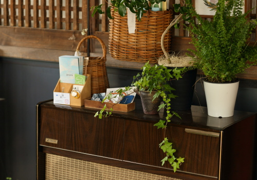 アンティークな家具と鉢植えのインテリアの組み合わせがオシャレ