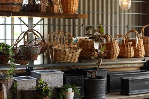 カゴや陶器、木の鉢など好きな入れ物を選んでコーディネーオできます